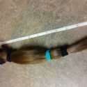 FOR SALE: 10″ Light Chestnut/Brown, Virgin Hair