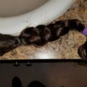 Beautiful Virgin 15 inch Brown Hair 4 inches Thick!!