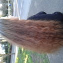 Beautiful hair for sell