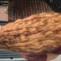 Virgin red hair 14-16 inches