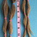 14 inches dirty blond hair with natural golden highlights. Never colored.