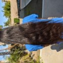"26"" straight black virgin hair (3.75"" thickness)"